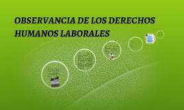 Copy of OBSERVANCIA DE LOS DERECHOS HUMANOS LABORALES