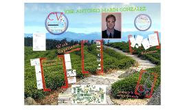 Curriculum Vitae Jose Antonio Marín González
