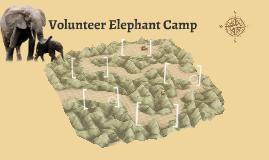 Volunteer Elephant Camp