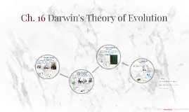 Copy of Chapter 16 Darwin's Theory of Evolution