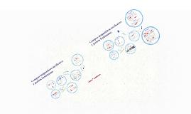 Copy of Campos magnéticos oscilantes y pulsos luminosos