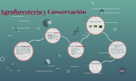 Copy of Copy of Copy of Agroforestería y Conservación