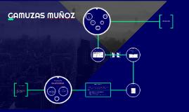 GAMUZAS MUÑOZ
