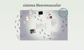 Copy of sistema Neuromuscular