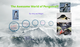 The Awesome World of Penguins!!!!
