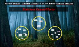 Copy of Matrices Causa-Efecto
