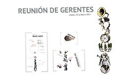 Copy of Reunión Gerentes HG