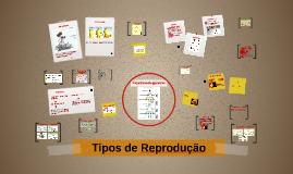 Copy of Tipos de Reprodução