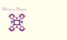 Copy of Mitosis y Meiosis