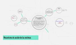 Mecanismo de acción de las enzimas