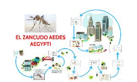 EL ZANCUDO AEDES AEGYPTI