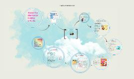 Copy of targetas protocolarias
