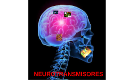 Copy of NEUROTRANSMISORES