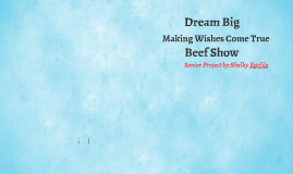 Dream Big, Making Wishes Come True Beef Show