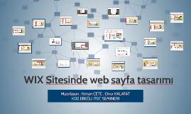 WIX Sitesinde web sayfa tasarımı