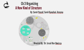 Copy of A New Kind of Structure