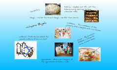 Jalapeno Bagels - Vocabulary
