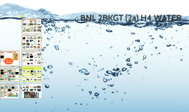 BNL 2KGT 2a H4 Water