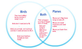 Copy of Planes and Birds