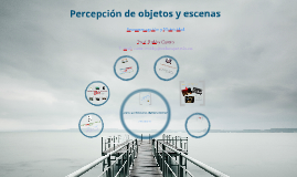 Percepción de Objetos y Escenas