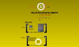 Copy of PMI*pmi