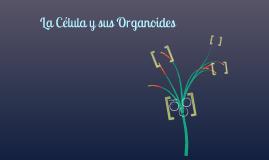 La celula y sus organoides