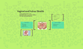 Copy of Vaginal and Vulvar Health