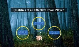 qualities of an effective team player If you want to build a great team, you need great team players below, i discuss the indispensable qualities of an effective team player as you interview candidates.