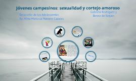 Jóvenes Campesinos, Sexualidad y Cortejo