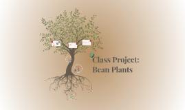 Head Start Final Project