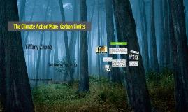Carbon Limits