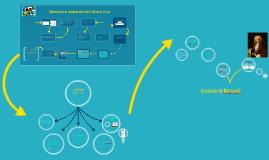 Hidrodinámica:Fundamentos del análisis de flujo