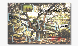 Copy of Tuck Everlasting 5th Grade WebQuest