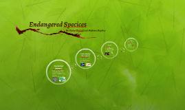 Endangered Specices