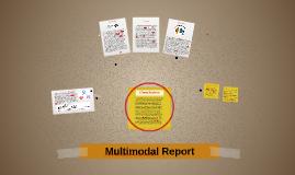 Multimodal Report