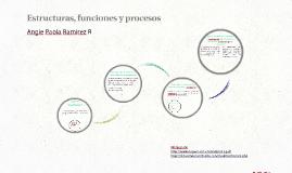 Estructuras, funciones y procesos