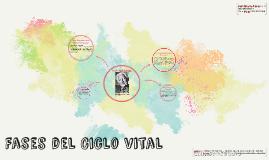 Fases del Ciclo vital