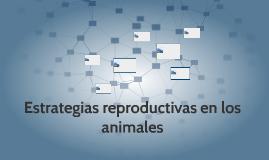 Estrategias reproductivas en los animales