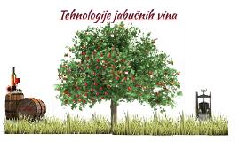 Tehnologije jabučnih vina