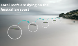 Coral reefs are dying on the Australian coast