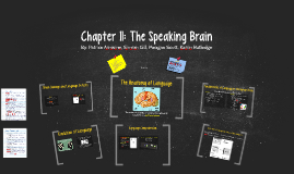 Chapter 11: The Speaking Brain