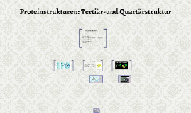 Proteinstrukturen: Tertiär-und Quartärstruktur