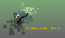 Wetlands and Rivers