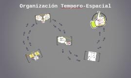 Organización Temporo-Espacial