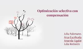 Optimización selectiva con compensación