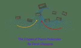 The 3 types of Macro Molecules
