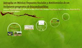 Jatropha en México: Impactos Sociales y Ambientales de un in