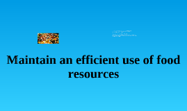 Maintain an efficient use of food resources