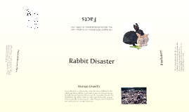 Rabbit Disaster (Bio)