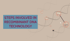 Copy of STEPS INVOLVED IN RECOMBINANT DNA TECHNOLOGY